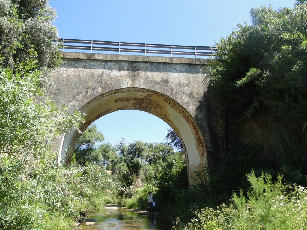 ALFEBRE BRIDGE